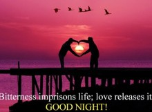 SMS good night love messages
