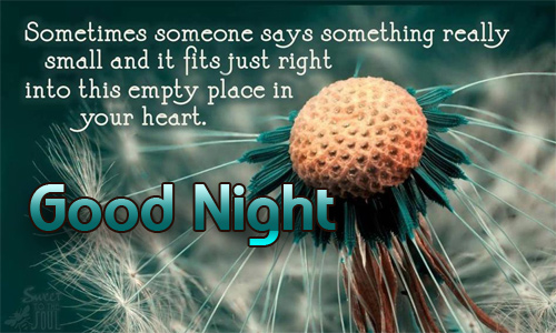 good-night-msg